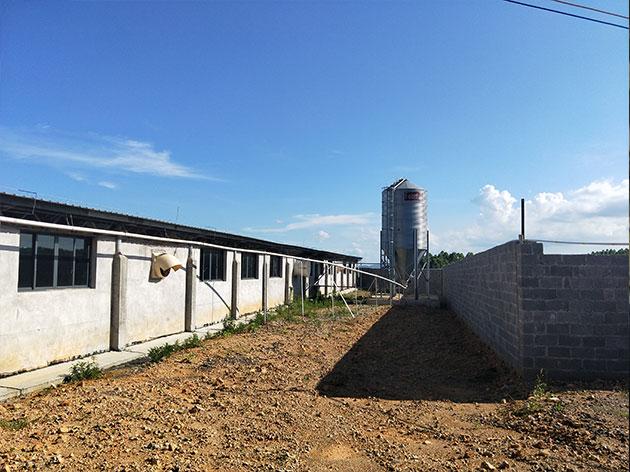 养猪场污水处理配套设施